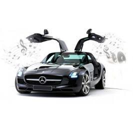Auto Mercedes-Benz SLS AMG (iPhone,iPad)