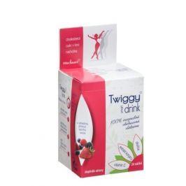 Twiggy glukoman + skořice + vitamín C nápoj lesní směs 24 sáčků