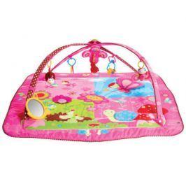 Hrací deka s hrazdou Gymini® Tiny Princess ™ Move&Play
