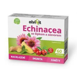 Echinacea se šípkem a zázvorem 60 tob.