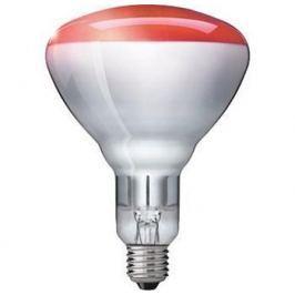 Náhradní žárovka 100W