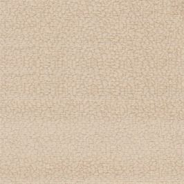 Amigo - Pravý roh (maroko 2351)