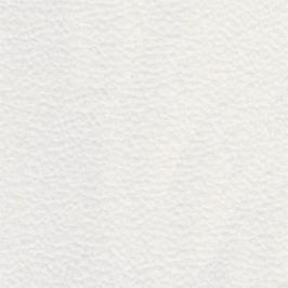 Planpolster A+ - Pravá (enoa snow 131210/plastový kluzák)