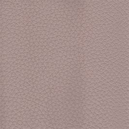 Bellunno - Roh levý, rozklad, úl.pr., op.hl (kongo col. 123)
