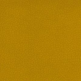 Lazio - otoman vlevo (carabu 131)