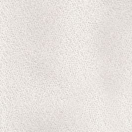 Stella - roh pravý (moric 1)
